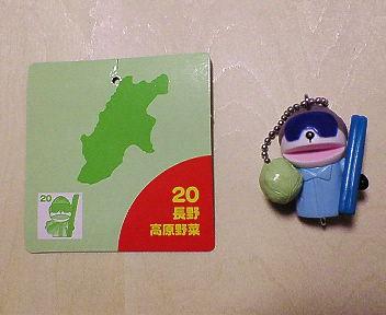20 長野 高原野菜