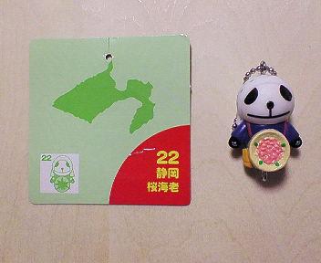 22 静岡 桜海老