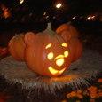がぼちゃプー